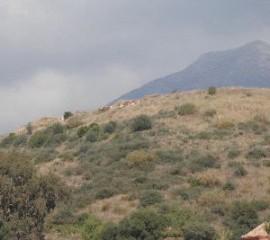 Cerro del colorao