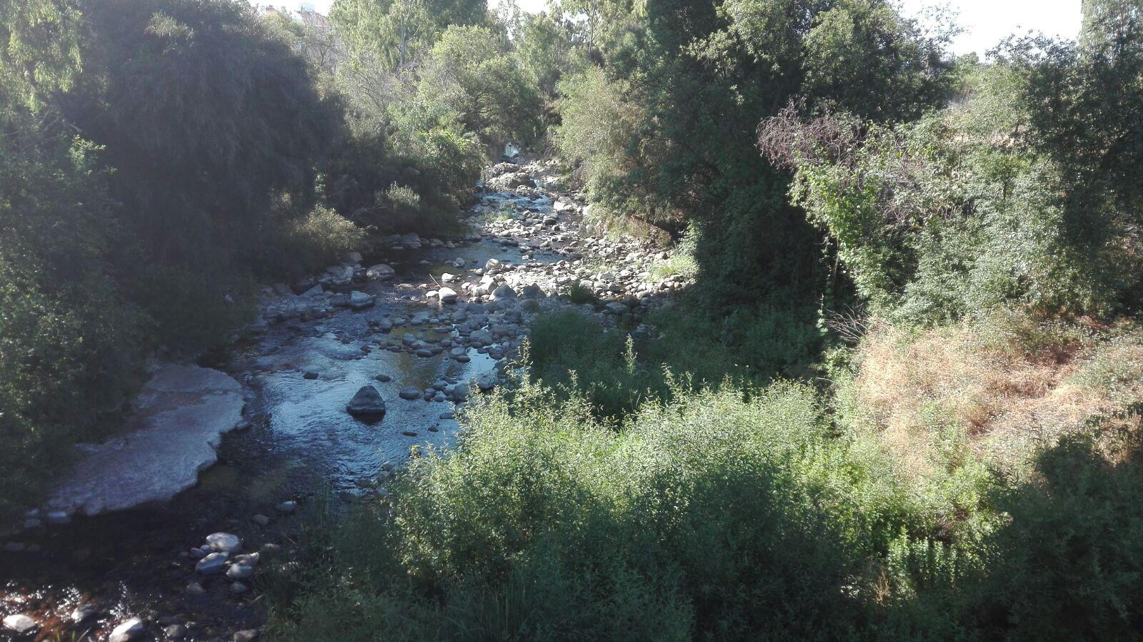 OSP solicita al Pleno realizar un estudio sobre la biodiversidad del Río Guadaiza que permita limpiar sin perjuicio medioambiental