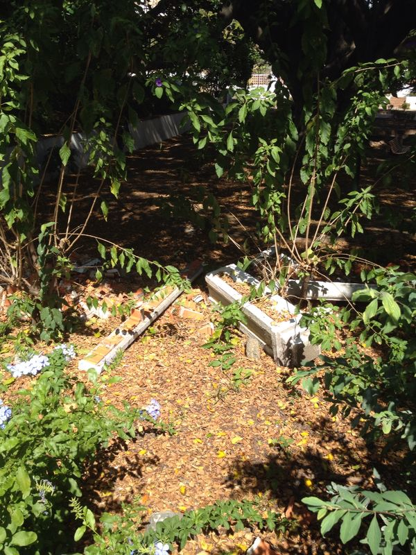 OSP denuncia el abandono y la falta de mantenimiento de las viviendas sociales de El Ángel